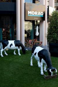 Las vacas de Morao